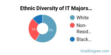 Information Technology Majors in SC Ethnic Diversity Statistics