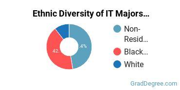 Information Technology Majors in TN Ethnic Diversity Statistics