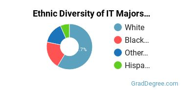 Information Technology Majors in VT Ethnic Diversity Statistics