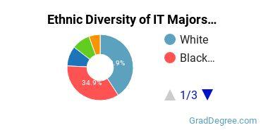 Information Technology Majors in VA Ethnic Diversity Statistics