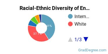 Racial-Ethnic Diversity of Environmental Engineering Students with Master's Degrees