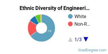 General Engineering Majors in CO Ethnic Diversity Statistics