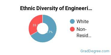 General Engineering Majors in DC Ethnic Diversity Statistics