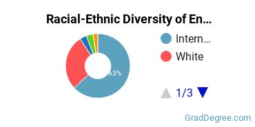 Racial-Ethnic Diversity of Engineering Doctor's Degree Students