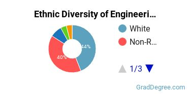 General Engineering Majors in GA Ethnic Diversity Statistics