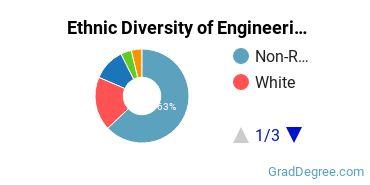 General Engineering Majors in IL Ethnic Diversity Statistics