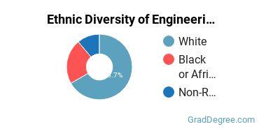 General Engineering Majors in ME Ethnic Diversity Statistics