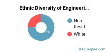 General Engineering Majors in MI Ethnic Diversity Statistics