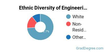General Engineering Majors in MT Ethnic Diversity Statistics