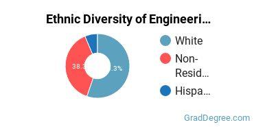 General Engineering Majors in NE Ethnic Diversity Statistics