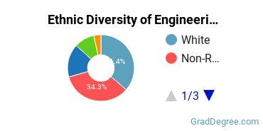 General Engineering Majors in NH Ethnic Diversity Statistics