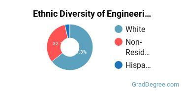 General Engineering Majors in NJ Ethnic Diversity Statistics