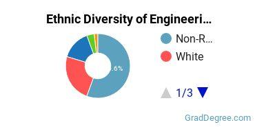 General Engineering Majors in NM Ethnic Diversity Statistics