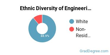 General Engineering Majors in VT Ethnic Diversity Statistics