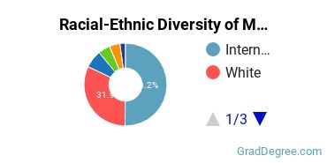 Racial-Ethnic Diversity of Materials Engineering Students with Master's Degrees
