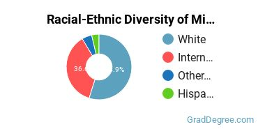 Racial-Ethnic Diversity of Mining Engineering Students with Master's Degrees