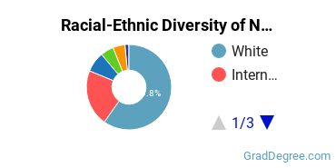 Racial-Ethnic Diversity of Nuclear Engineering Students with Master's Degrees