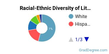 Racial-Ethnic Diversity of Literature Students with Master's Degrees