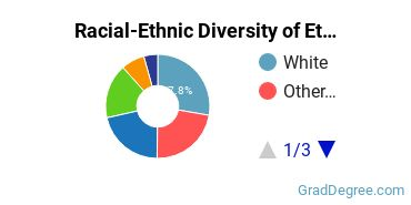 Racial-Ethnic Diversity of Ethnic Studies Students with Master's Degrees