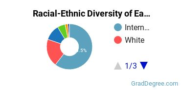 Racial-Ethnic Diversity of East Asian Students with Master's Degrees