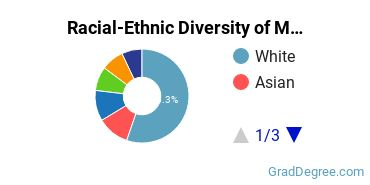 Racial-Ethnic Diversity of Medical Ethics Students with Master's Degrees