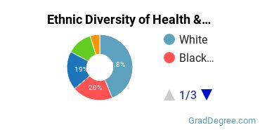 Health/Medical Admin Services Majors in CT Ethnic Diversity Statistics