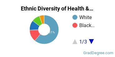 Health/Medical Admin Services Majors in MA Ethnic Diversity Statistics