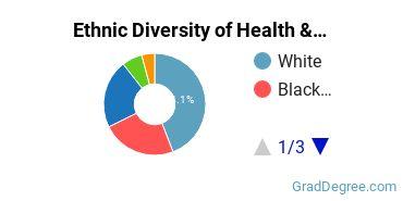 Health/Medical Admin Services Majors in TX Ethnic Diversity Statistics