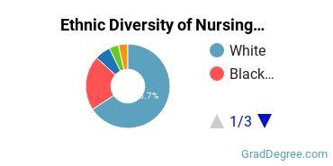 Nursing Majors in DE Ethnic Diversity Statistics