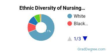 Nursing Majors in DC Ethnic Diversity Statistics
