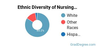 Nursing Majors in MT Ethnic Diversity Statistics