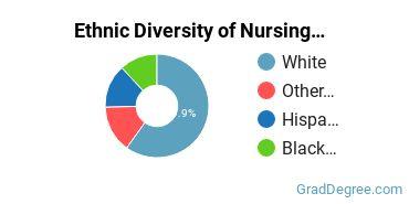 Nursing Majors in NV Ethnic Diversity Statistics