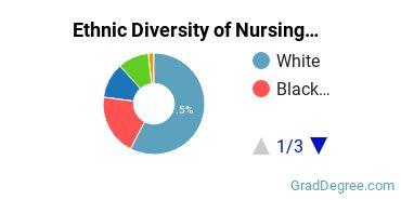 Nursing Majors in NY Ethnic Diversity Statistics