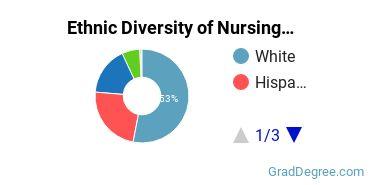 Nursing Majors in TX Ethnic Diversity Statistics