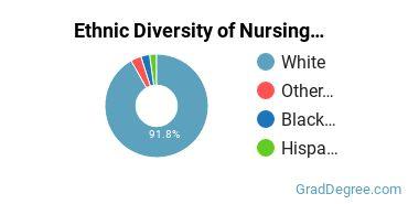 Nursing Majors in WV Ethnic Diversity Statistics