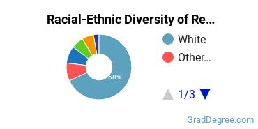 Racial-Ethnic Diversity of Rehabilitation Students with Master's Degrees