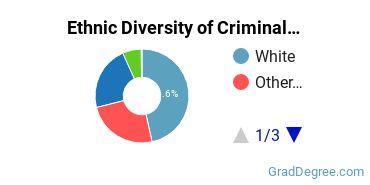 Criminal Justice & Corrections Majors in VA Ethnic Diversity Statistics