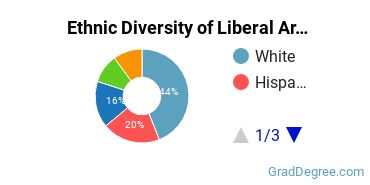 Liberal Arts General Studies Majors in FL Ethnic Diversity Statistics