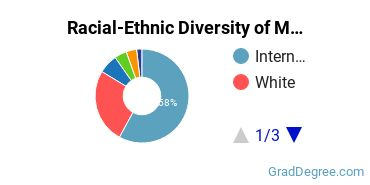 Racial-Ethnic Diversity of Mathematics & Statistics Students with Master's Degrees