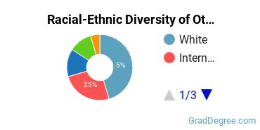 Racial-Ethnic Diversity of Other Statistics Students with Master's Degrees