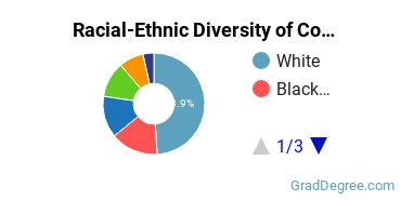 Racial-Ethnic Diversity of Conflict Resolution Students with Master's Degrees