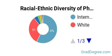 Racial-Ethnic Diversity of Physical Science Students with Master's Degrees