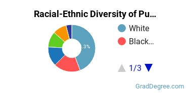 Racial-Ethnic Diversity of Public Admin Students with Master's Degrees