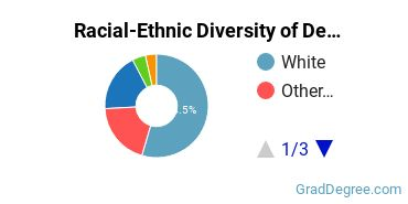 Racial-Ethnic Diversity of Design Graduate Certificate Students