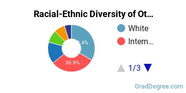 Racial-Ethnic Diversity of Other Visual Art Students with Master's Degrees